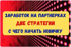 zarabotok-na-partnerkah-—-dve-strategii.-s-chego-nachat-novichku.png