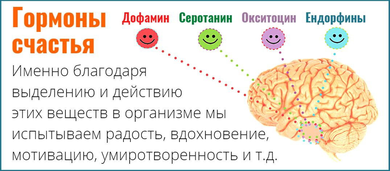 Дофамин, Серотонин, Окситоцин, Эндорфины - гормоны счастья и радости